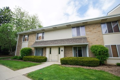 1740 Robin Walk UNIT A, Hoffman Estates, IL 60169 - #: 09955336