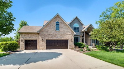 29 Chippewa Court, Oswego, IL 60543 - #: 09955385