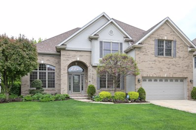 12200 Winterberry Lane, Plainfield, IL 60585 - MLS#: 09955386