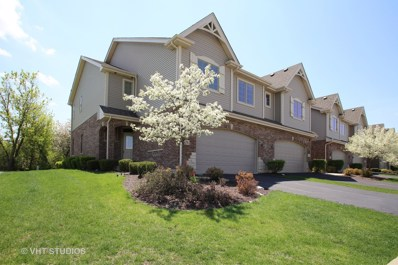 406 E Tall Oaks Lane, Itasca, IL 60143 - MLS#: 09955496