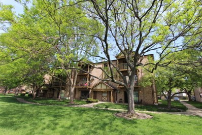 821 S DWYER Avenue UNIT E, Arlington Heights, IL 60005 - MLS#: 09956569