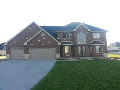 19801 Oakwood Avenue, Lynwood, IL 60411 - MLS#: 09956755