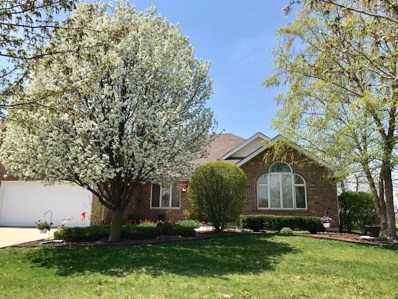 22456 Parkview Lane, Frankfort, IL 60423 - MLS#: 09957172