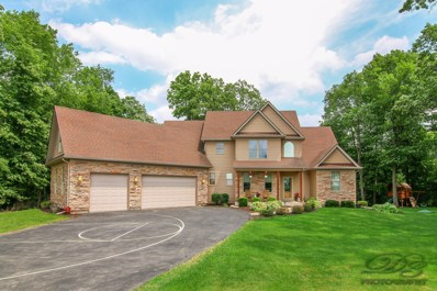 4040 River Ridge Lane, Sandwich, IL 60548 - MLS#: 09957798