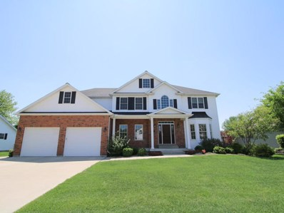 829 Kimberly Lane, Ottawa, IL 61350 - MLS#: 09958167