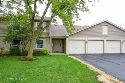 221 Brett Circle UNIT D, Wauconda, IL 60084 - MLS#: 09958517