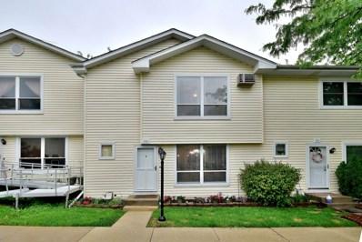 203 Raintree Court, Aurora, IL 60504 - MLS#: 09958917