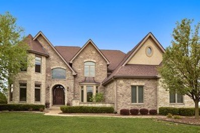 14040 Bunratty Court, Orland Park, IL 60467 - MLS#: 09959012