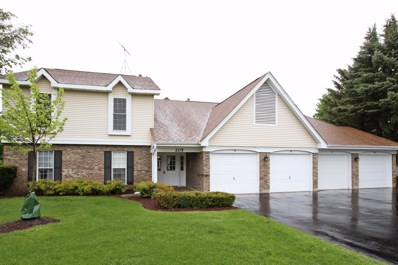 205 N CREEKSIDE Trail UNIT B, Mchenry, IL 60050 - MLS#: 09959069