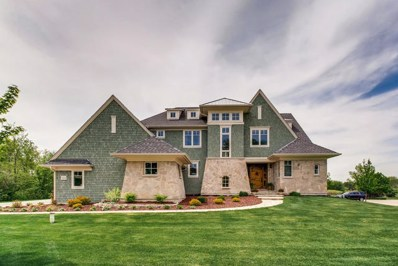 115 Equestrian Way, Hawthorn Woods, IL 60047 - #: 09959072