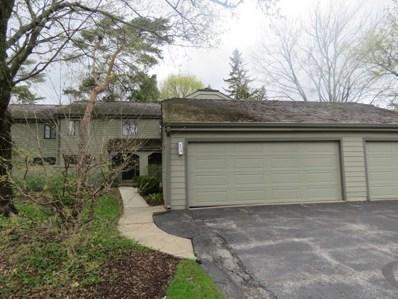 224 N Timber Ridge Lane, Lake Barrington, IL 60010 - #: 09959118