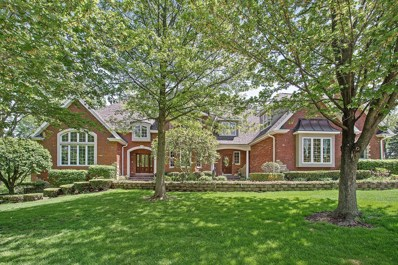 10801 Crystal Springs Lane, Orland Park, IL 60467 - MLS#: 09959671