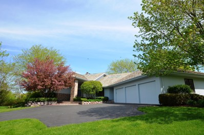 5641 Shadowbrook Court, Libertyville, IL 60048 - #: 09959849