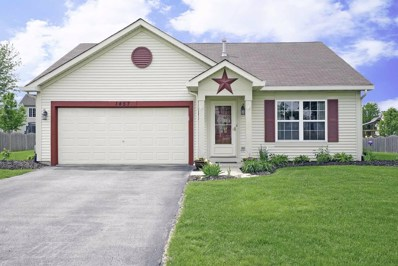 1457 BLUESTEM Lane, Minooka, IL 60447 - #: 09960021