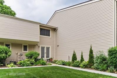 1017 Casa Drive, Schaumburg, IL 60173 - #: 09960179