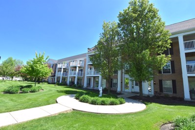 5501 Carriageway Drive UNIT 302A, Rolling Meadows, IL 60008 - #: 09960861