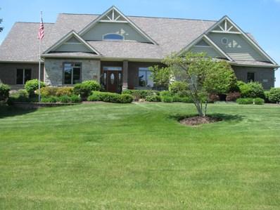 8703 Prairie Field Drive, Union, IL 60180 - #: 09961060