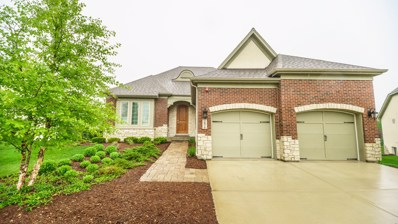 7974 Savoy Club Court, Burr Ridge, IL 60527 - MLS#: 09961204