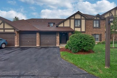 1485 Johnstown Lane UNIT D, Wheaton, IL 60187 - MLS#: 09961816