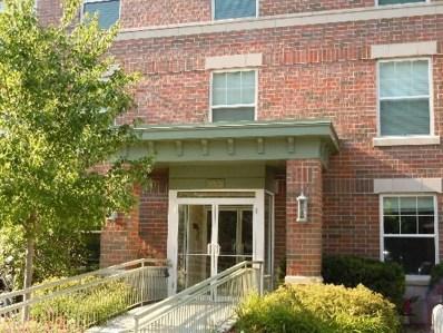133 W Palatine Road UNIT 304, Palatine, IL 60067 - MLS#: 09961944