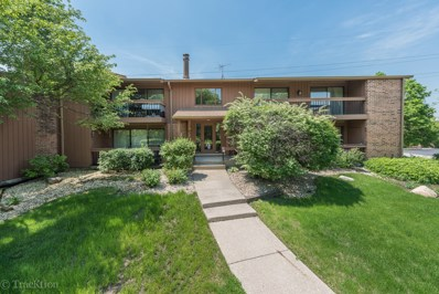 7990 S Garfield Avenue UNIT 14-4, Burr Ridge, IL 60527 - MLS#: 09962535