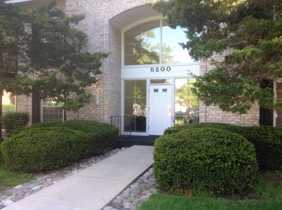 5200 Carriageway Drive UNIT 222, Rolling Meadows, IL 60008 - #: 09962951