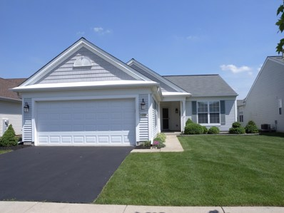 13384 ROCKTON Trail, Huntley, IL 60142 - #: 09963233
