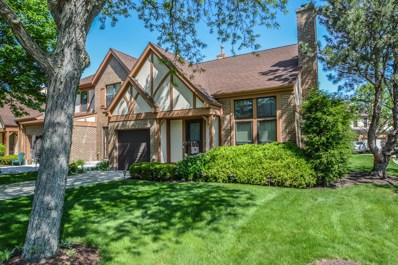 11028 Westminster Drive, Westchester, IL 60154 - MLS#: 09963306