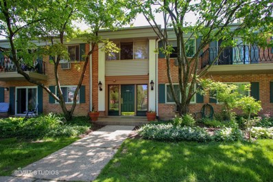 715 E Falcon Drive UNIT 209E, Arlington Heights, IL 60005 - MLS#: 09963410