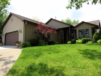 36 HOLE IN THE WALL Court, Wilmington, IL 60481 - MLS#: 09963492