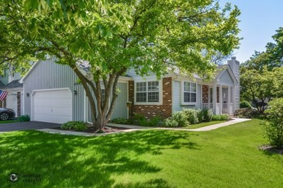 6445 Bush Place, Downers Grove, IL 60516 - MLS#: 09964142