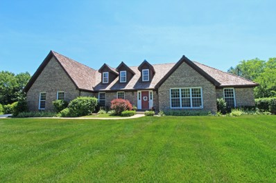 5806 Teal Court, Long Grove, IL 60047 - MLS#: 09965289