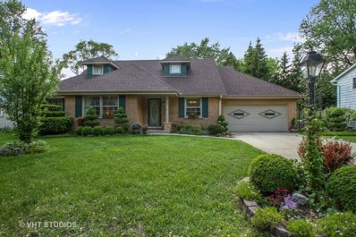 1338 HIGHPOINT Lane, Northbrook, IL 60062 - #: 09965718