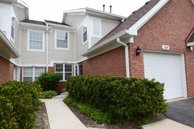 229 Mansfield Way, Roselle, IL 60172 - #: 09966400