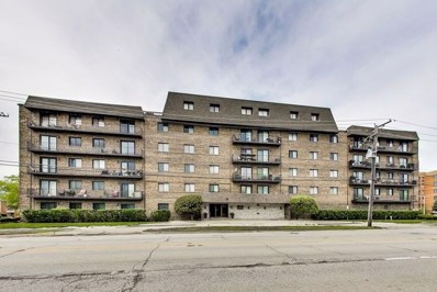 960 S River Road UNIT 411, Des Plaines, IL 60016 - MLS#: 09966645