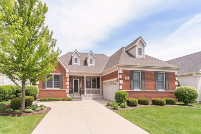 32 Aztec Court, South Barrington, IL 60010 - #: 09967748
