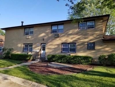 9855 El Cameno Court, Orland Park, IL 60462 - MLS#: 09968300