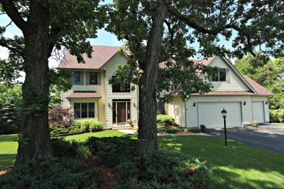 1341 Infanta Court, Woodstock, IL 60098 - #: 09968941