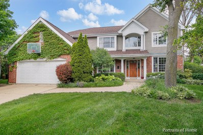 509 Wedgewood Court, Hinsdale, IL 60521 - MLS#: 09969496