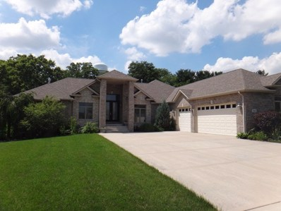 20442 Grand Traverse Drive, Frankfort, IL 60423 - #: 09969588