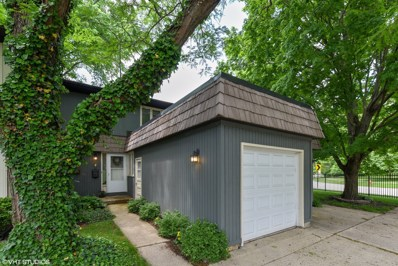 2 Pioneer Park Place, Elgin, IL 60123 - #: 09969872