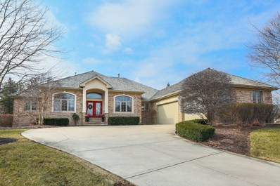 17 Loblolly Court, Lemont, IL 60439 - MLS#: 09969954