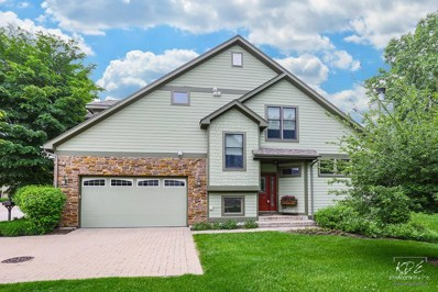 13206 S Lake Mary Drive, Plainfield, IL 60585 - MLS#: 09970030