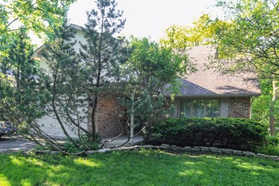 6474 Big Bear Drive, Indian Head Park, IL 60525 - MLS#: 09970268