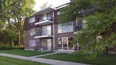 11010 Central Avenue UNIT 2A, Chicago Ridge, IL 60415 - #: 09970486