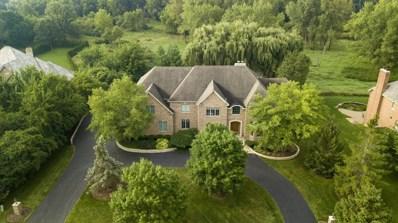 20843 W High Ridge Drive, Kildeer, IL 60047 - #: 09970629