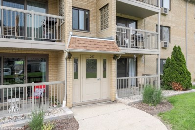 247 N Smith Street UNIT 1E, Palatine, IL 60067 - #: 09970730