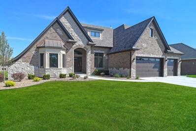 13880 W Stonebridge Woods Crossing Drive, Homer Glen, IL 60491 - MLS#: 09971299