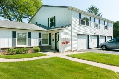 897 WELLINGTON Avenue UNIT 897, Elk Grove Village, IL 60007 - MLS#: 09971464