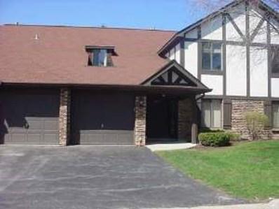 855 Johnstown Lane UNIT B, Wheaton, IL 60187 - MLS#: 09971522